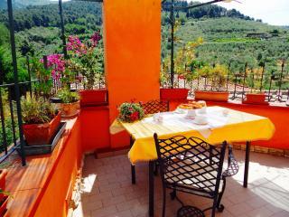 Apt La Terrazza,Private terrace near Pisa - Calci vacation rentals