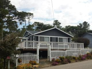Cozy and Modern Oceanview Cottage - Cambria vacation rentals