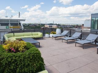 Stay Alfred Rooftop Deck TD Garden, Beacon Hill AN2 - Boston vacation rentals