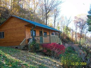 Hillside Cabin-3 miles from ASU w/ a View - Boone vacation rentals