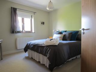 Bright Spacious great views in Dublin Centre - Dublin vacation rentals