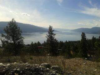 Okanagan Lake View Home Near Beach ! - Vernon vacation rentals