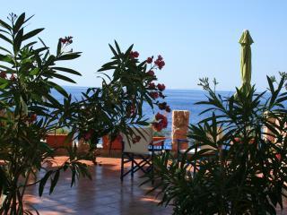 Casa Miguel - Lavander apartment - Sveta Nedelja vacation rentals