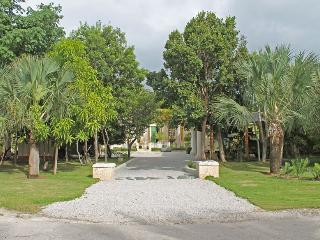 Villa Celeste - Chef, Maid, Butler, Golf Carts - Punta Cana vacation rentals