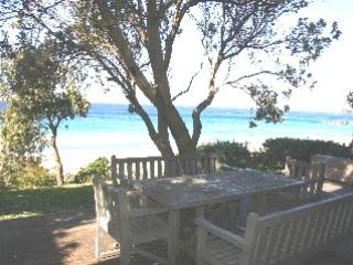 Chookshed - Image 1 - Blueys Beach - rentals