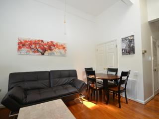 Dupont Adams Morgan Cherry Blossom - Washington DC vacation rentals