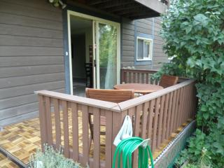 Lakeview Vacation Suite - Westbank vacation rentals