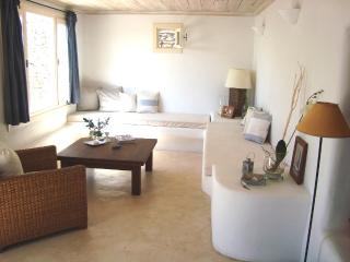 Villa Anima In Mykonos - Tourlos vacation rentals