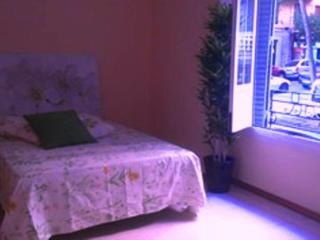 Madrid Center large and quiet apartment - Madrid vacation rentals