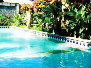 1 Bedroom Private Villa Kuta-2 Queen Beds,AC,WIFI - Kuta vacation rentals