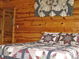 Cozy 2 bedroom Rogers House with Dishwasher - Rogers vacation rentals