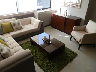 Ciudad del Rio Guayaquil beautiful and confortable - Guayaquil vacation rentals