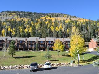 Mountain Condo 155  awaits your stay - Durango Mountain vacation rentals