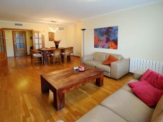 Spacious apt.with views of Science museum Valencia - Valencia vacation rentals