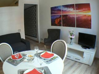 Flat in Barcelona downtown urgell - Barcelona vacation rentals