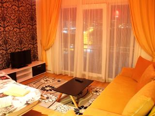 Adorable Istanbul Apartment rental with Internet Access - Istanbul vacation rentals