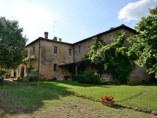Apartment Valentina countryside not far from Siena - Siena vacation rentals