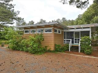 Comfortable and beachy, 4 bedroom cottage just 2 blocks to the beach - Bethany Beach vacation rentals