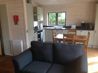 Comfortable Lodge with Deck and Internet Access - Foxdale vacation rentals