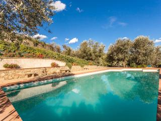 Margarita Villa, Bright,  6 bedroom, Pool - Castiglion Fiorentino vacation rentals