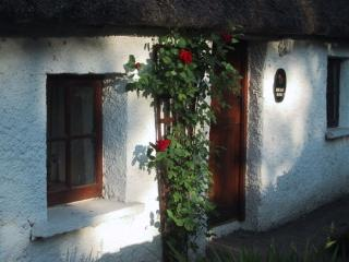 Charming Cottage with Dishwasher and Short Breaks Allowed - Aglish vacation rentals