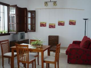 [76] Lovely apartment 1min walk to the Mosque - Cordoba vacation rentals