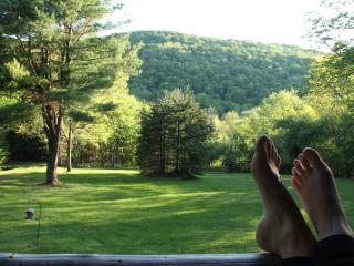 Cozy Cabin in the Catskills for Summer - Andes vacation rentals