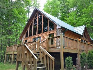 Comfortable 2 bedroom Vacation Rental in Bryson City - Bryson City vacation rentals