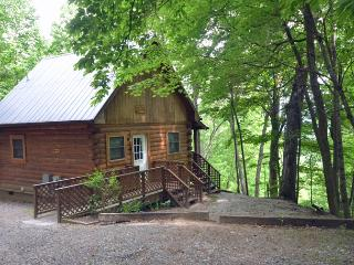 Solitude Cabin - Bryson City vacation rentals