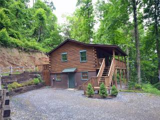 Miracle Mountain Cabin - Bryson City vacation rentals