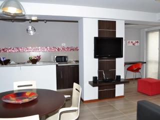 Executive con Jacuzzi Single // Doble - Cordoba vacation rentals