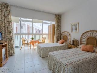 Apartmento tipo estudio con piscina - San Bartolome de Tirajana vacation rentals