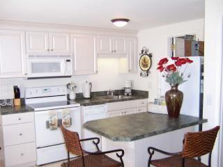 1 bedroom Condo with Internet Access in Englewood - Englewood vacation rentals