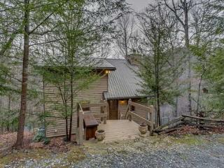 Above the Brook - Seclusion 5 Min to DT Blue Ridge - Blue Ridge vacation rentals