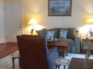 Nice Condo with Internet Access and Dishwasher - Saint Petersburg vacation rentals