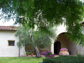 Holiday villa on the hills near  Florence - Rignano sull'Arno vacation rentals