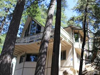 Cozy Cottage, Walking Distance to Lake w/ rights - Lake Arrowhead vacation rentals