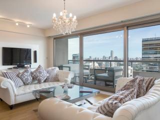 Superb 3 Bedroom Apartment in Palermo Nuevo - Buenos Aires vacation rentals