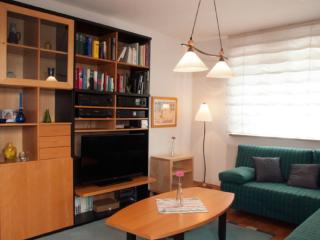 Vacation Apartment in Dresden - quiet, central, comfortable (# 8803) - Dresden vacation rentals