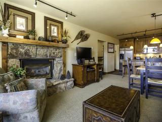 Bronze Tree Condominiums - BT406 - Steamboat Springs vacation rentals