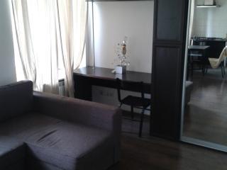 Light apartment in the center of St. Petersburg - Saint Petersburg vacation rentals