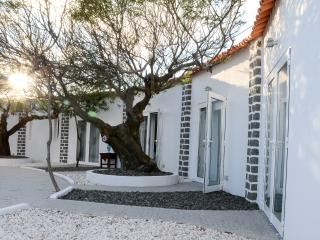 Perfect Guest house with Internet Access and Mountain Views - Azoia vacation rentals