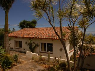 A Little House in a Farm - La Orotava vacation rentals