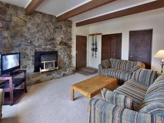 2 Bedroom Condo In The Town Of Dillon Near The Lake, Bike Path And Marina - Dillon vacation rentals