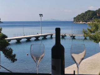 Seaside apartment on promenade ,3 bedrooms - Cavtat vacation rentals
