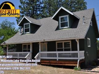 DogFriendly WIFI PingPong 1/3m>Pool 25m>Yosemite - Groveland vacation rentals
