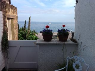 The Beach House - New Listing - Budleigh Salterton vacation rentals