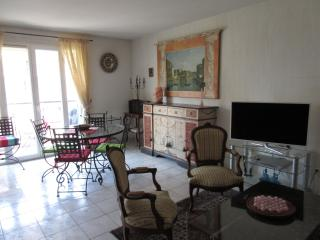 Apartment in Cagnes sur Mer, Alpes Maritimes - Cagnes-sur-Mer vacation rentals