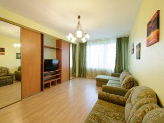№44 Apartments in Moscow - Moscow vacation rentals