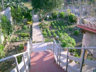 Nice Bed and Breakfast with Deck and Internet Access - Dolianova vacation rentals